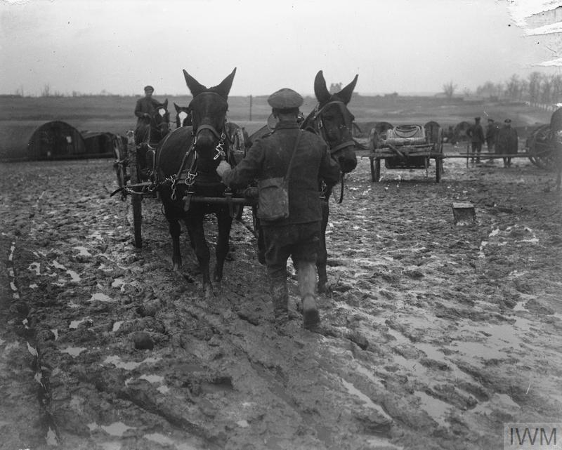 IWM Q 10627 Mule team crossing muddy field (19 Feb 1918)