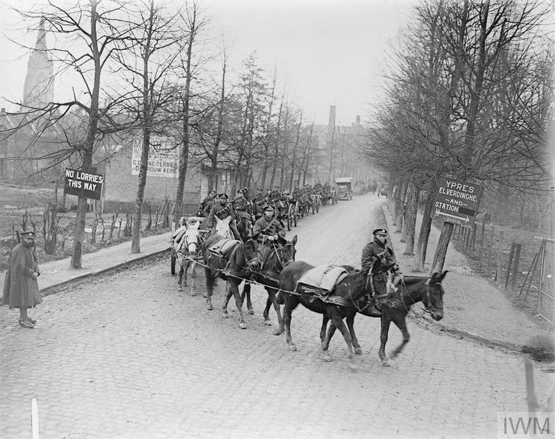 IWM Q 10271 Mule-drawn artillery column passing through Poperinghe