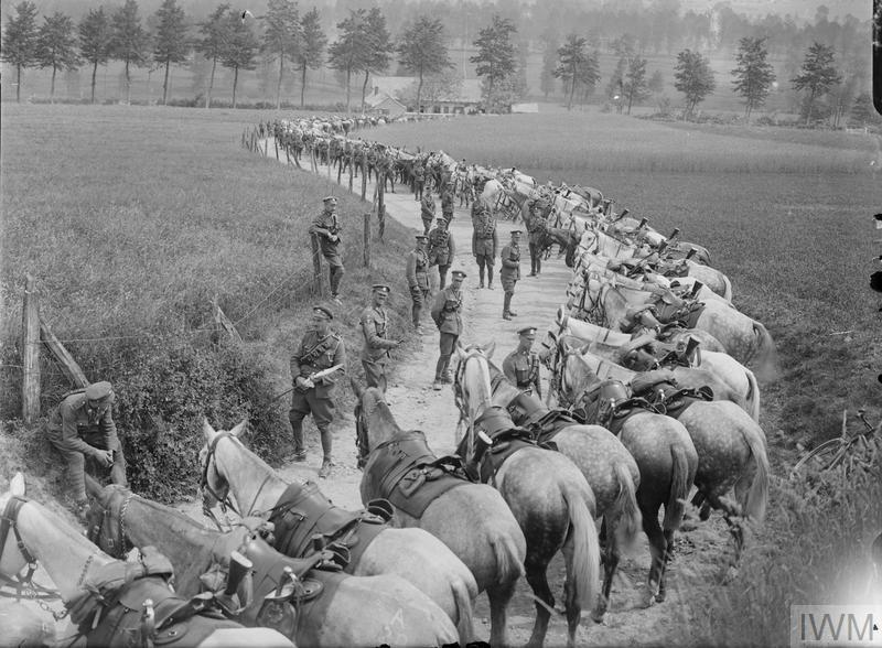 IWM (Q 3269) Royal Scots Greys resting by the road near Montreuil, 8 May 1918