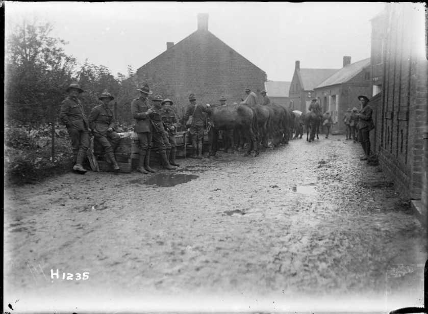 nlnzimage 1-2 013782-G NZ Troops watering mules, Solesmes, Nov 1918