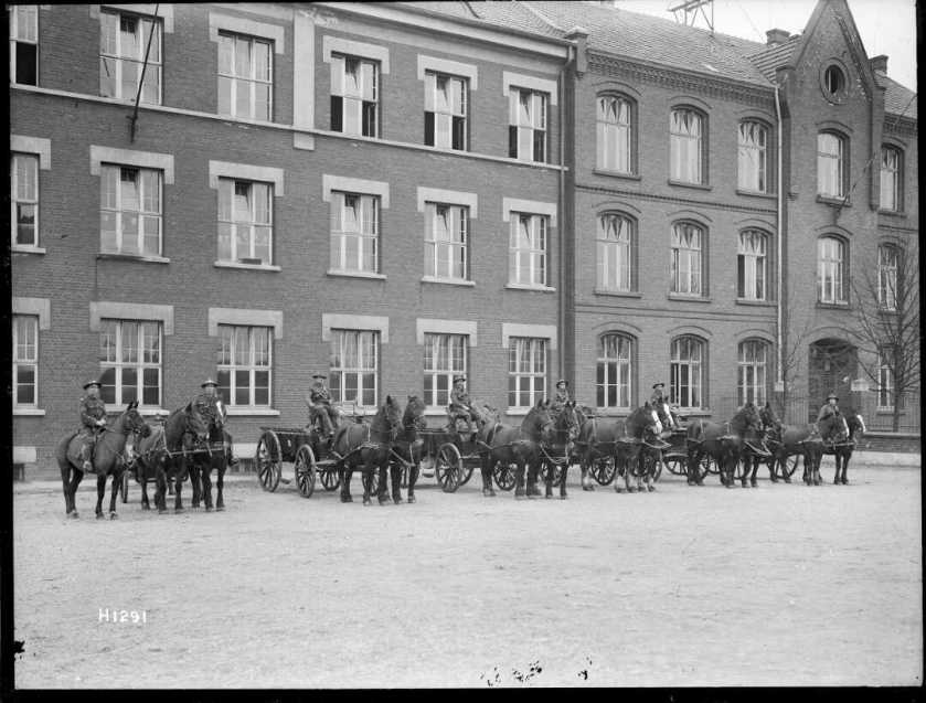 nlnzimage 1-1 002108-g nz horse transport, hq building leverkusen, jan 1919